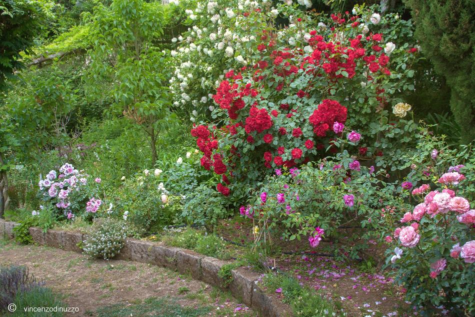 Il Giardino Segreto dell'Anima