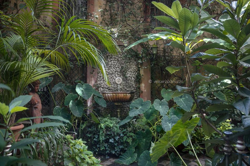 Il giardino svelato di Palazzo Zamprotta