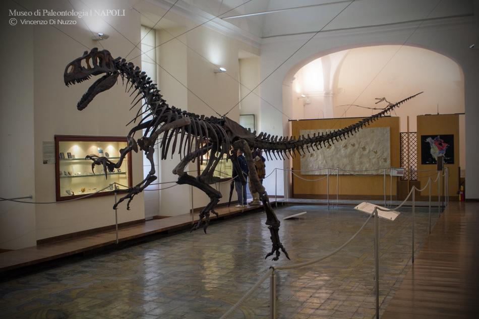 Museo di Paleontologia