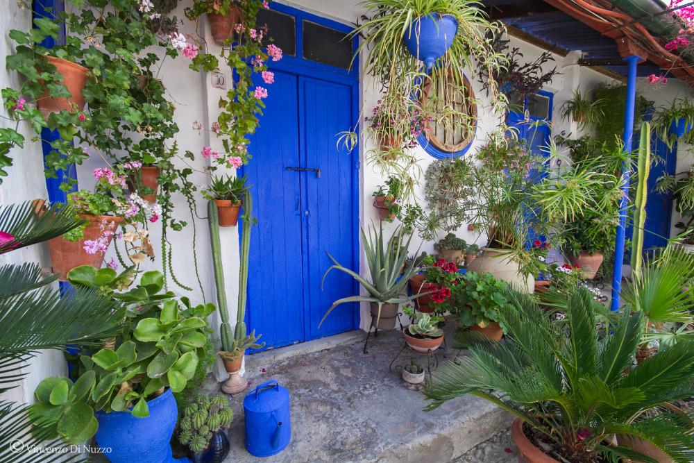 I patios di Córdoba: Patrimonio Immateriale dell' Umanità