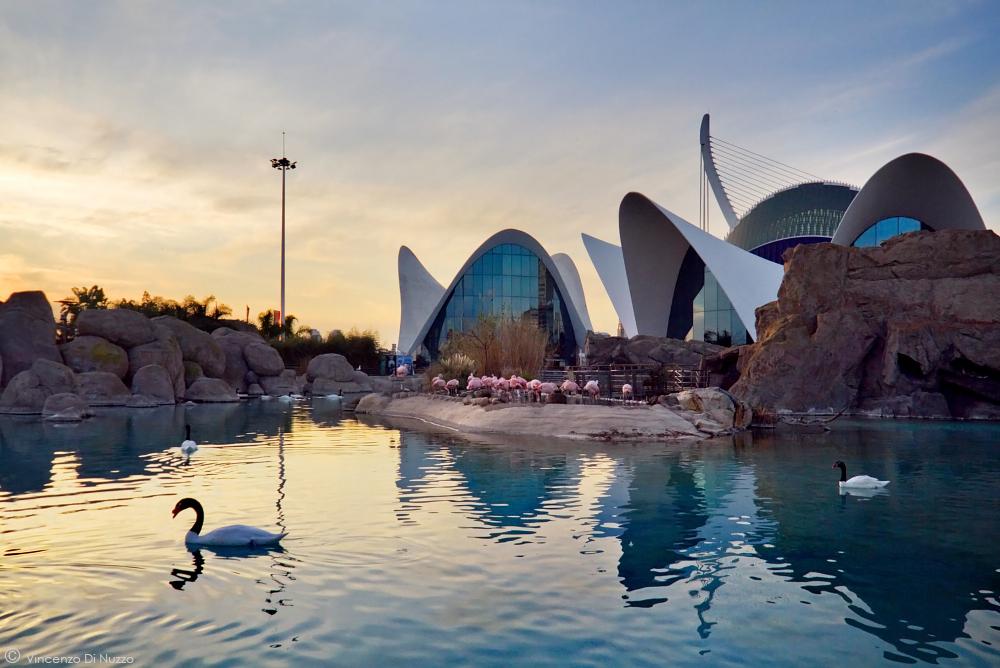 Valencia: tra passato e futuro